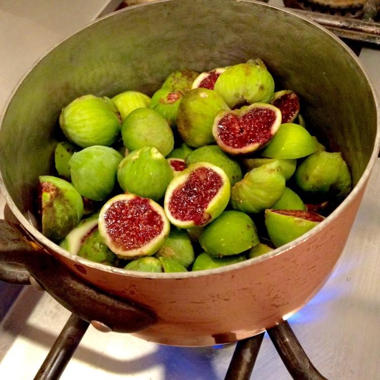 A Fig Year