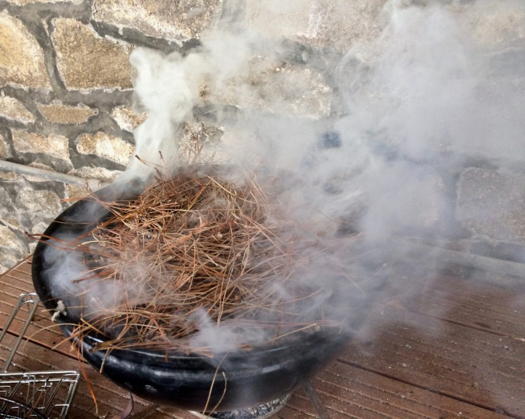Mussels cooking in pine needles