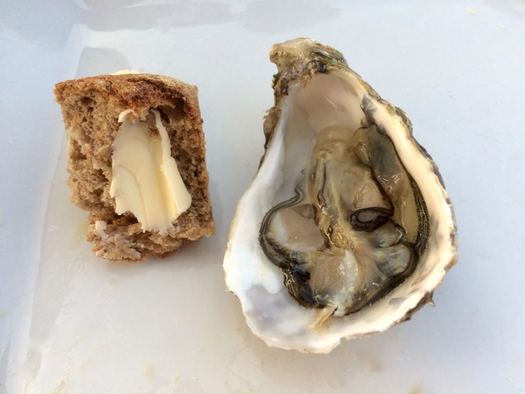 oyster and bread