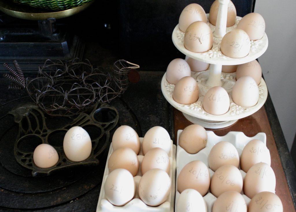 france and eggs
